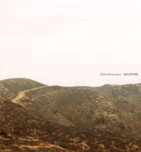 Wildfire: Sasha Bezzubov, Bill McKibben