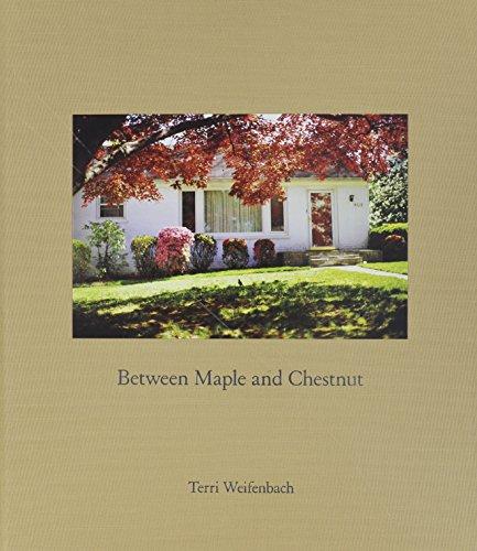 9781590053515: Terri Weifenbach Between Maple and Chestnut /Anglais