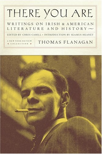 9781590170687: There You Are: Writings on Irish and American Literature and History
