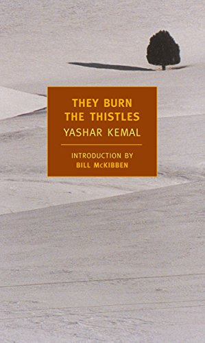 9781590171851: They Burn the Thistles (New York Review Books)
