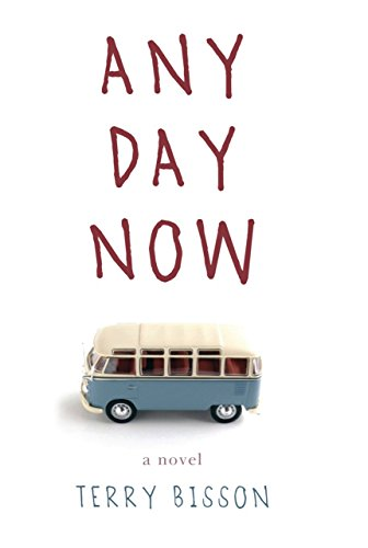 9781590207093: Any Day Now: A Novel