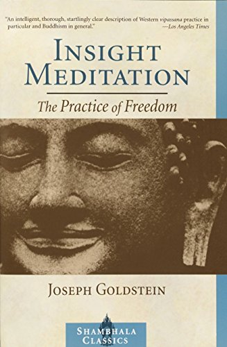 9781590300169: Insight Meditation: The Practice of Freedom