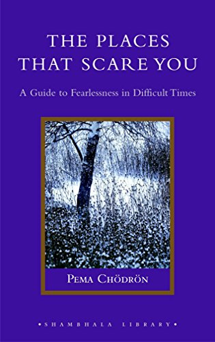 9781590302651: The Places That Scare You: A Guide to Fearlessness in Difficult Times (Shambhala Library)