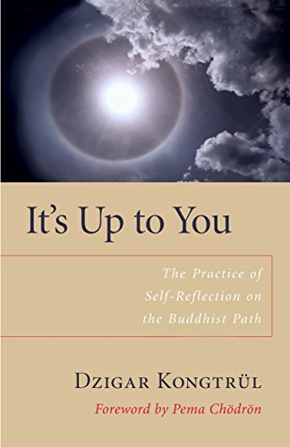 9781590303818: It's Up To You: The Practice of Selfreflection on the Buddhist Path