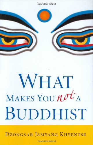 9781590304068: What Makes You Not a Buddhist, 1st Edition
