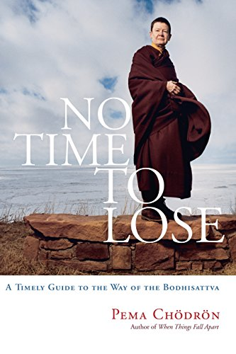 NO TIME TO LOSE: A Timely Guide To The Way Of The Bodhisattva (q)