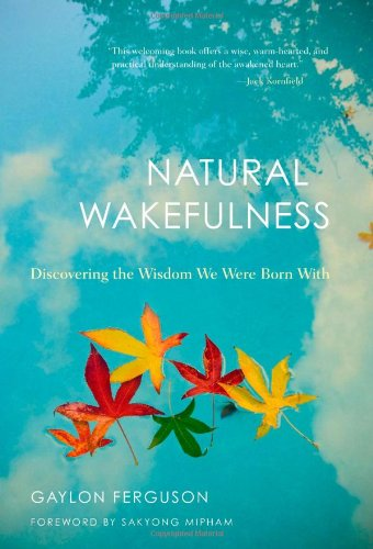 Natural Wakefulness: Discovering the Wisdom We Were Born With: Ferguson, Gaylon