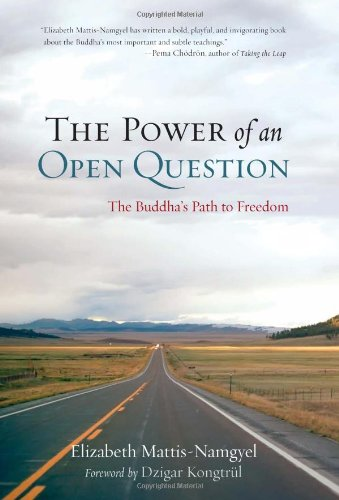 9781590307991: The Power of an Open Question: The Buddha's Path to Freedom