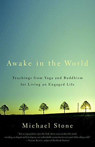 9781590308141: Awake in the World: Teachings from Yoga and Buddhism for Living an Engaged Life