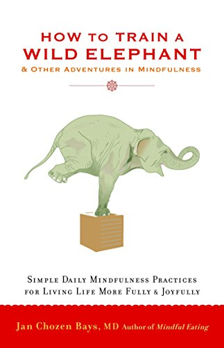 9781590308172: How to Train a Wild Elephant: And Other Adventures in Mindfulness