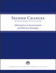 9781590319956: Second Chances in the Criminal Justice System: Alternatives to Incarceration and Recovery Strategies