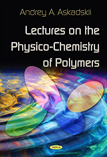 Lectures on the Physico-Chemistry of Polymers (Hardback): Audrey A. Askadskii