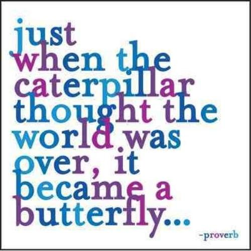 Quotable Butterfly Journal