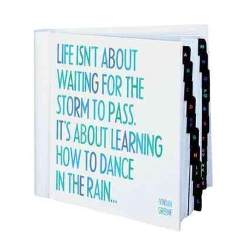 9781590354636: Dance in the Rain Address Book