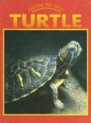 9781590361184: Turtle (Caring for Your Pet)