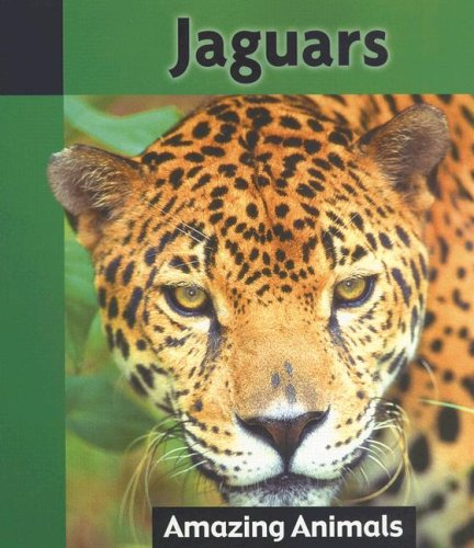 9781590363980: Jaguars (Amazing Animals)