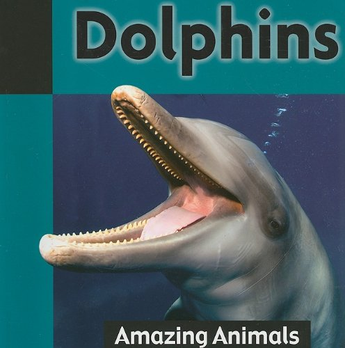 9781590369593: Dolphins (Amazing Animals)