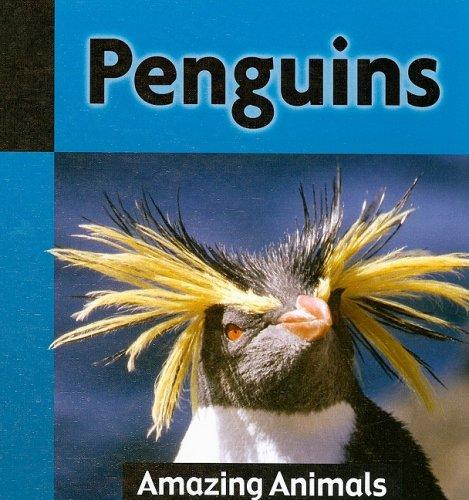 Penguins (Amazing Animals (Weigl)): David Whitfield