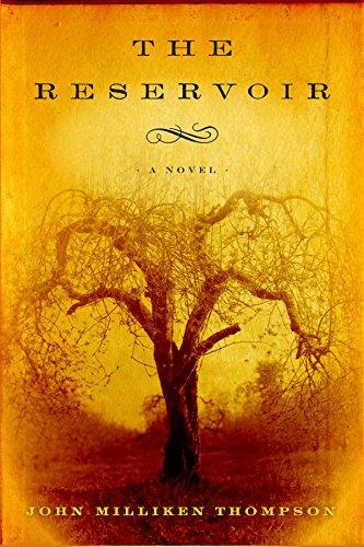 9781590514443: The Reservoir
