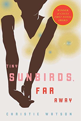 9781590514665: Tiny Sunbirds, Far Away