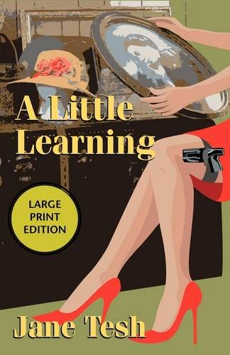 9781590586518: A Little Learning: A Madeline Maclin Mystery (Madeline Maclin Series)