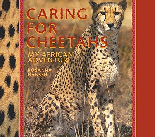 9781590783870: Caring for Cheetahs