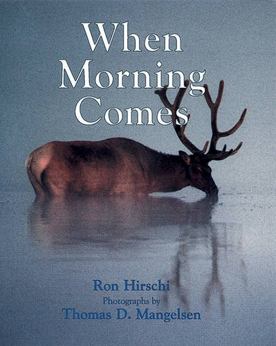 9781590784167: When Morning Comes
