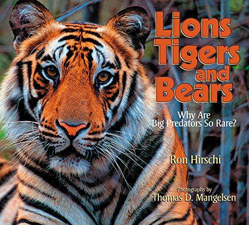 9781590784358: Lions, Tigers and Bears: Why are Big Predators So Rare? (Lion, Tigers and Bears)