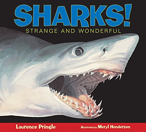9781590785713: Sharks!: Strange and Wonderful