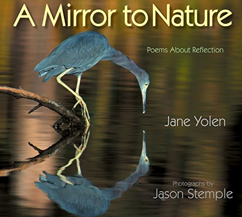 9781590786246: A Mirror to Nature: Poems About Reflection