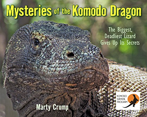 9781590787571: Mysteries of the Komodo Dragon: The Biggest