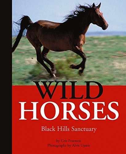 9781590787991: Wild Horses: Black Hills Sanctuary