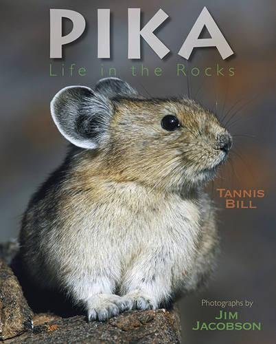Pika: Life in the Rocks: Tannis Bill