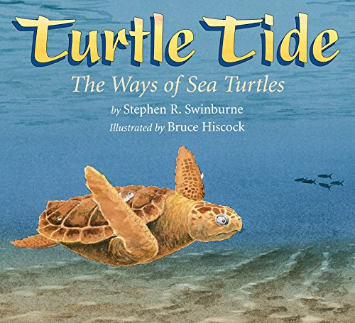 9781590788271: Turtle Tide: The Ways of Sea Turtles
