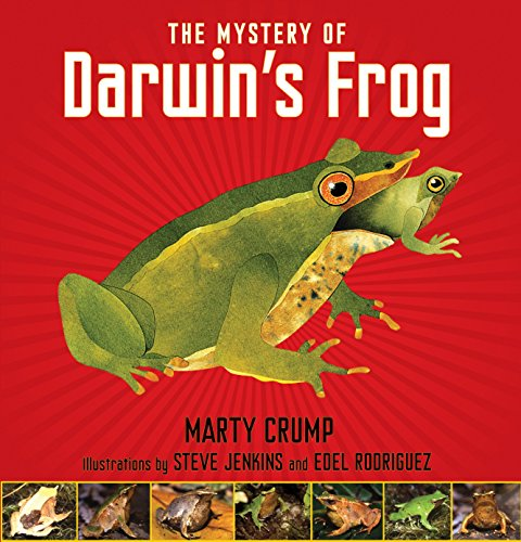 9781590788646: The Mystery of Darwin's Frog