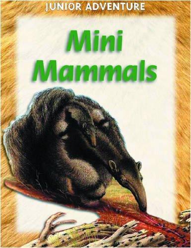 Mini Mammals (Junior Adventure): Sharon Dalgleish
