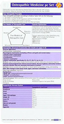 9781591035091: Osteopathic Medicine pc Set