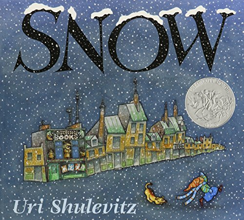 9781591125594: Snow