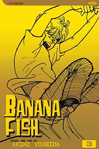 9781591161066: Banana Fish, Vol. 3