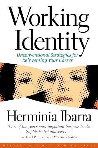 9781591394136: Working Identity: Unconventional Strategies for Reinventing Your Career