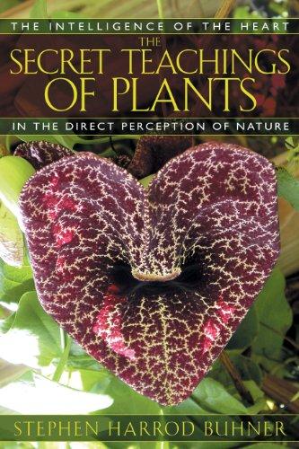 The Secret Teachings of Plants: The Intelligence: Buhner, Stephen Harrod