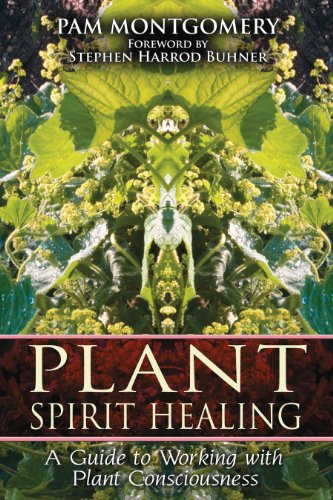 9781591430773: Plant Spirit Healing: A Guide to Working with Plant Consciousness