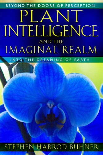 9781591431350: Plant Intelligence and the Imaginal Realm: Beyond the Doors of Perception into the Dreaming of Earth