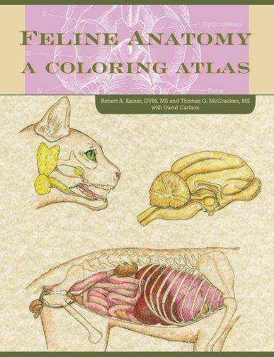 Feline Anatomy: A Coloring Atlas: Thomas O. McCraken,