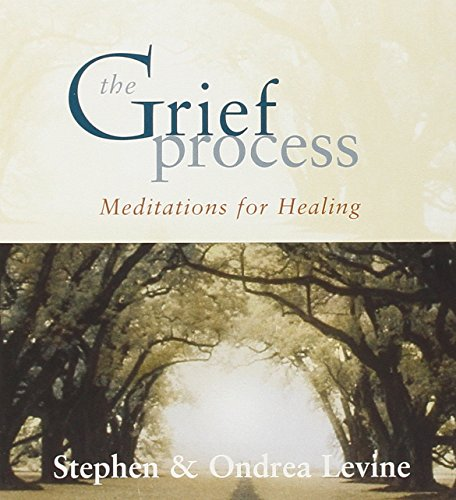 9781591794011: The Grief Process: Meditations for Healing