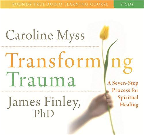 9781591796930: Transforming Trauma
