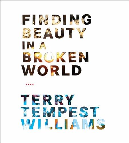 9781591797425: Finding Beauty in a Broken World