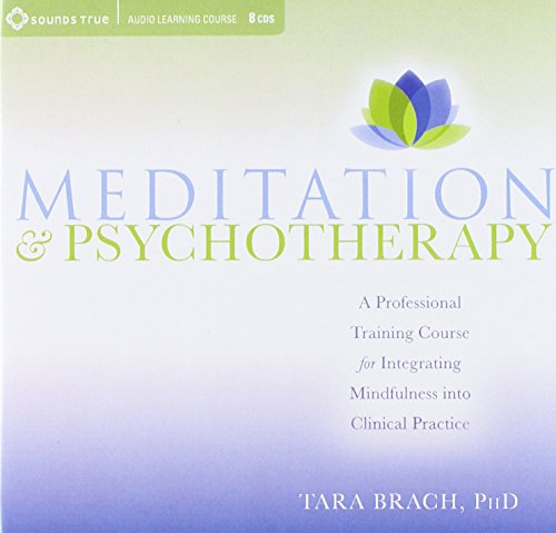 9781591799702: Meditation and Psychotherapy: A Professional Training Course for Integrating Mindfulness into Clinical Practice
