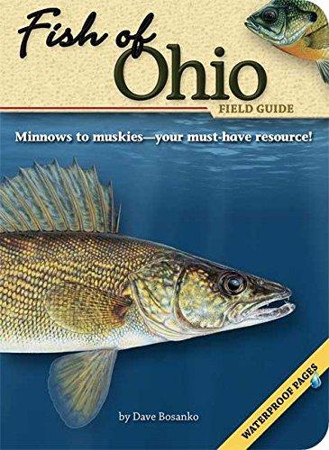 Fish of Ohio Field Guide (The Fish of): Bosanko, Dave