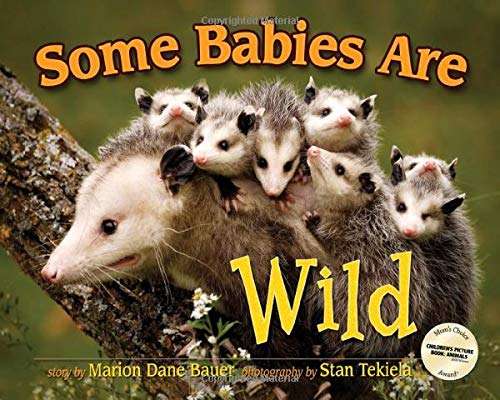 9781591930846: Some Babies Are Wild (Wildlife Picture Books)